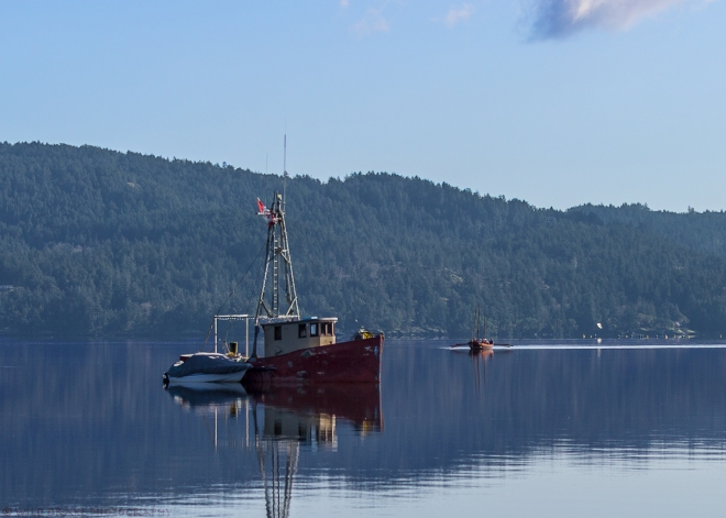 Boats in the Sooke Basin