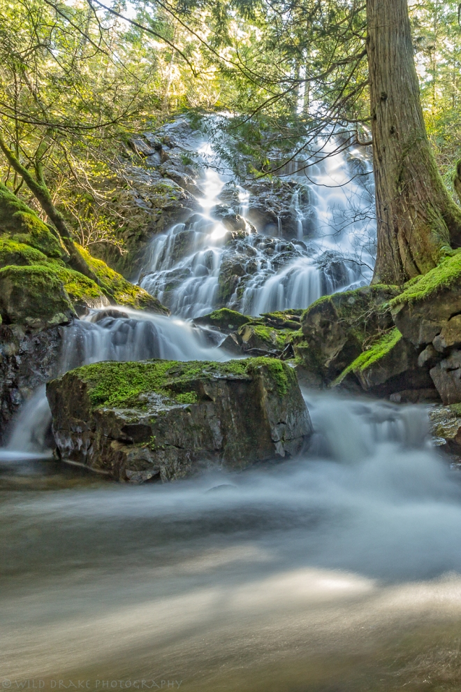 The Beautiful Cascading Waterfall at Mary Vine Creek