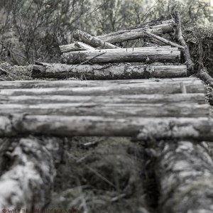 an old, disused, wooden bicycle pathway