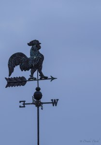 a chicken weather vane pointed westward