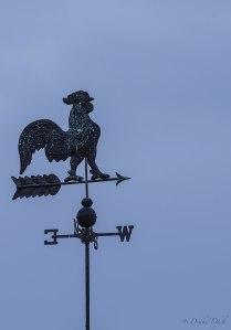 a chicken weather vane pointed westward