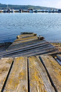 an old dock in disrepair sits along the shoreline