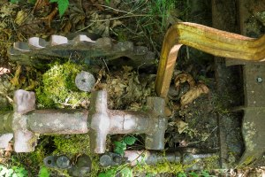 old gears covered with moss