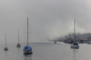 sailboats at anchor in a foggy harbour