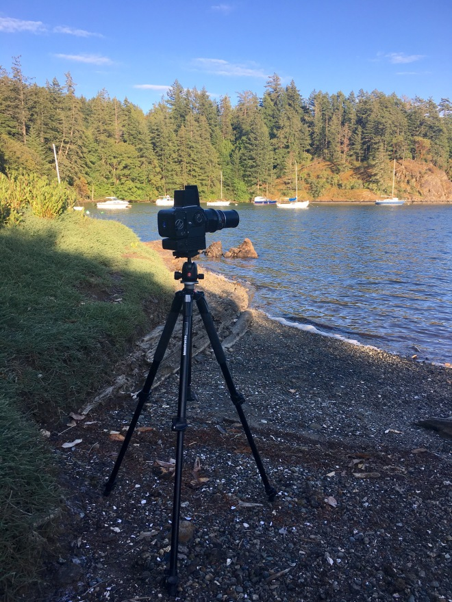 hasselblad on tripod
