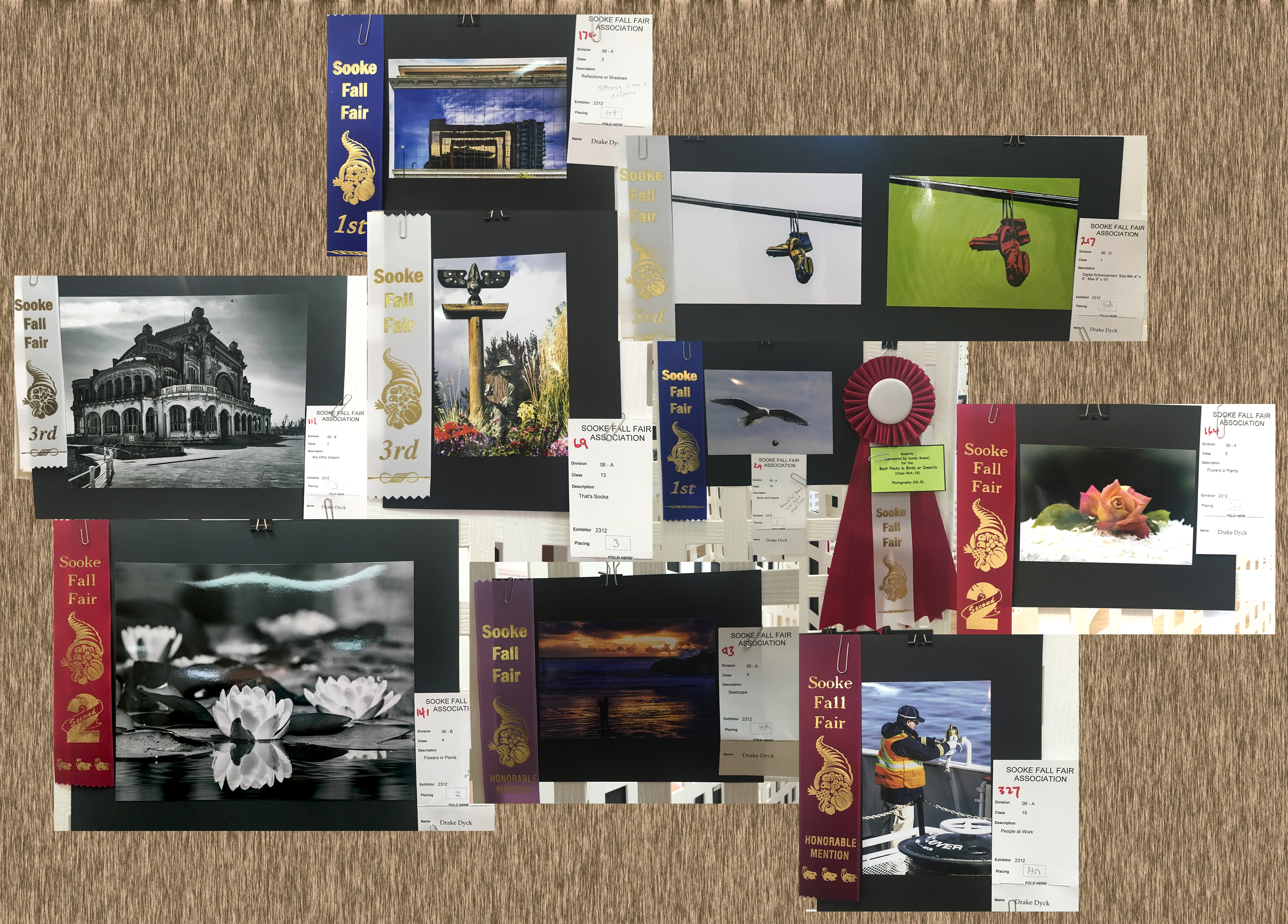 sff-winners-collage
