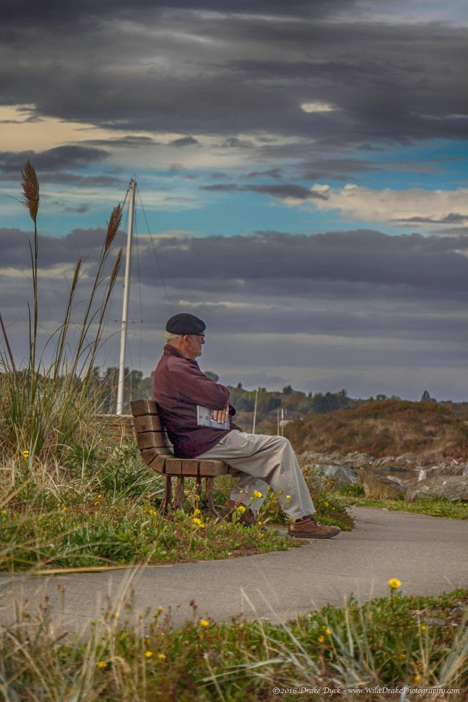old gentleman sitting on a bench with his book