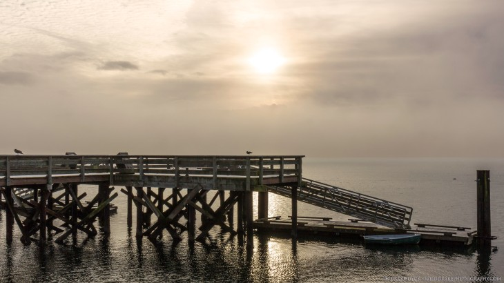 a lonely boardwalk sits deserted in the fog