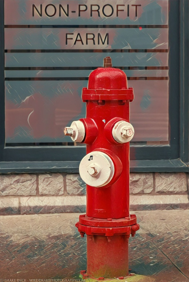Red and white fire plug
