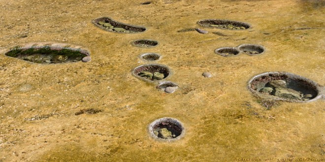 holes in the bedrock contain forms of saline and large rocks