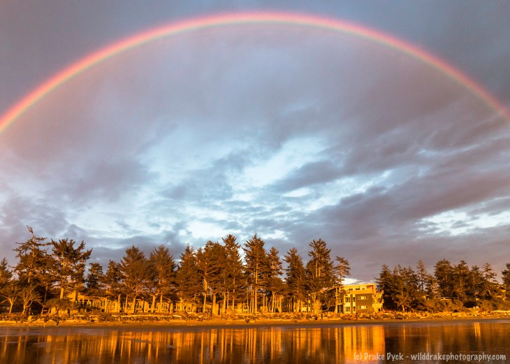 as the forest reflects on the wet sand, a rainbow arches overhead