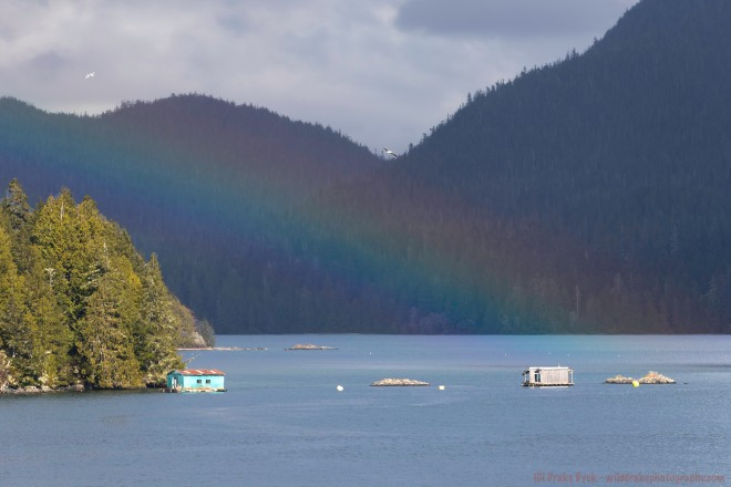 a faint rainbow can be seen in front of the mountains in Tofino BC