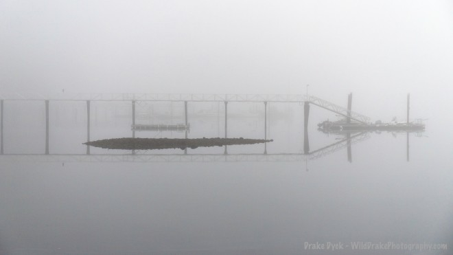 fog enshrouds a pier and rocks